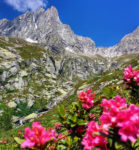 For free landscapes in the lower Valtellina. 5 ideas to walk.
