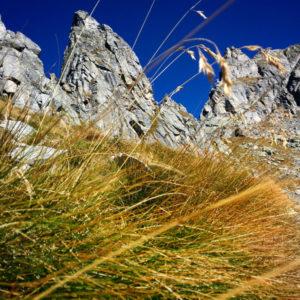 Hike to Passo dell'Oro - Valle dell'Oro
