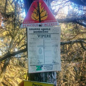 Short hike: Poira and Ledino loop