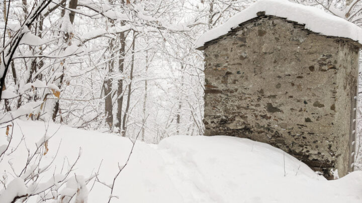 Snow - Costiera dei Cech, Valtellina 2020