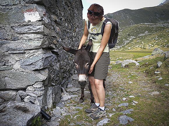 L'Alpe Visogno durante la salita al Bivacco Bottani