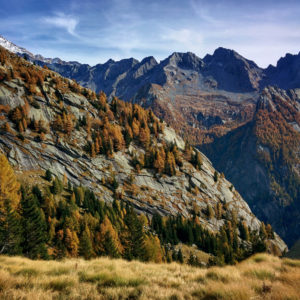 Alta Val Qualido