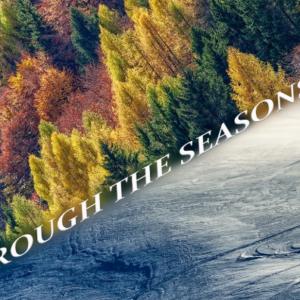Autunno ed Inverno sul lago di Como, Valtellina, lago Ceresio - Video