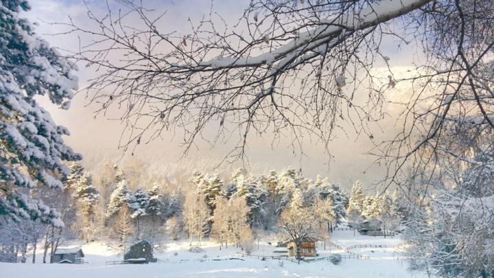 4 passi e 4 foto in mezzo alla neve seguendo il sentiero che da Chempo conduce a Ledino.