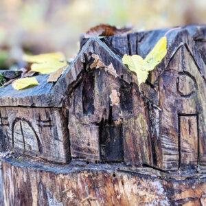 Colori e autunno sulla Costiera dei Cech.