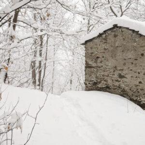 Neve sulla Costiera dei Cech, Valtellina 2020
