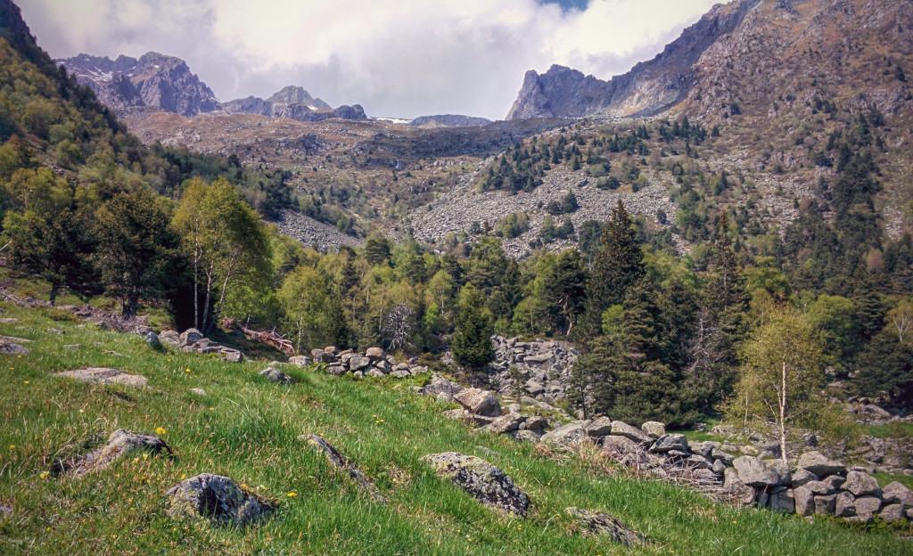 Alpeggio di Pesc sulla Costiera dei Cech, Valtellina